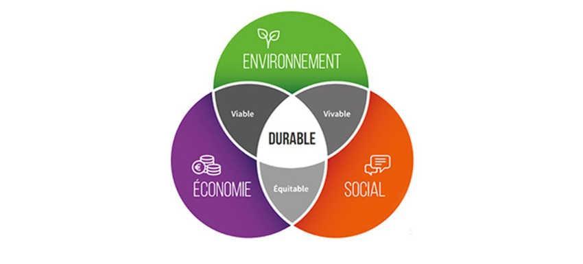 L'environnement, 7ème axe stratégique du Rotary international
