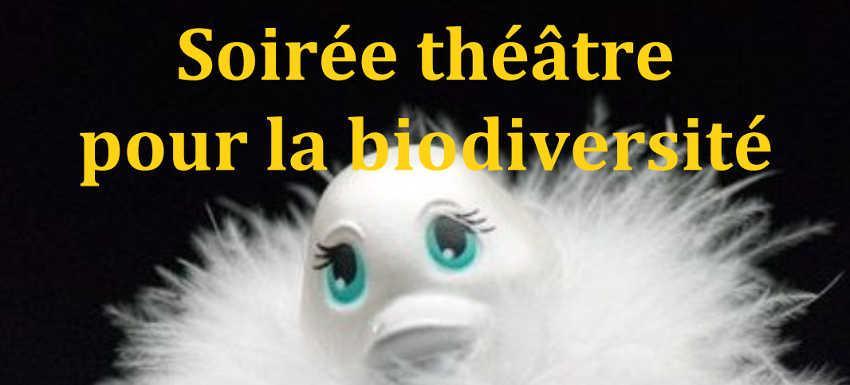 RC Metz Rive gauche : Soirée théâtre solidaire de la biodiversité